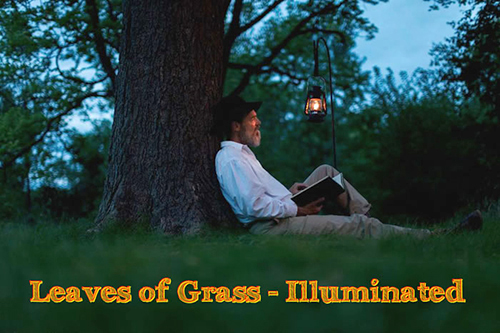 Leaves  of Grass--Illuminated